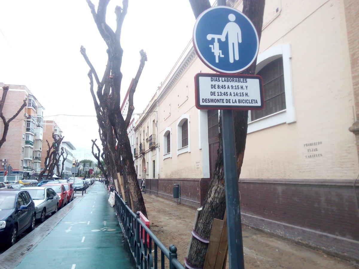 La nueva señalización para la bicicleta junto a un colegio de la Calle San Jacinto (foto publicada por @SevillaEnBici en twitter)